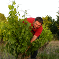 Domaine Eyguestre - Laurent Bellion