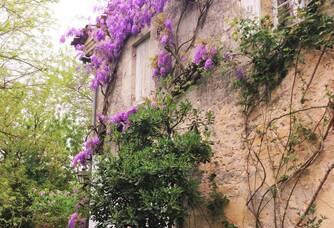 Le Château Lescaneaut
