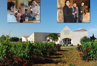 Au coeur des vignes du Domaine Pierre Belle