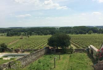 Vignes du Domaine des Hauts Baigneux