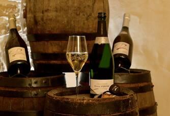 Dégustation du Champagne Lejeune