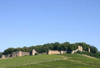 Vue du Château d'Arlay