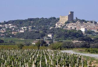 La vallée du Domaine Duseigneur