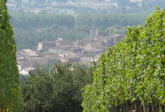 Le domaine du Château Mallié