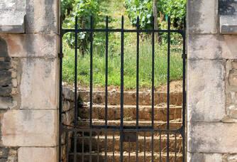 Le clos des argillières du Château de Prémeaux
