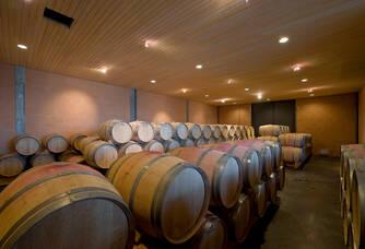 Les barriques dans la cave du Château Marjosse