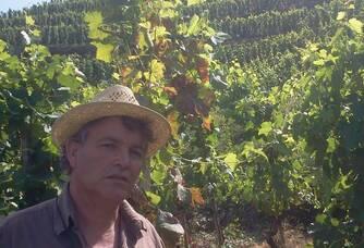 Guy Farge dans ses vignes