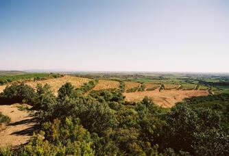 Le terroir des apsres du Domaine Lafage