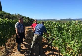 Balade dans les vignes du Domaine Mandourelle